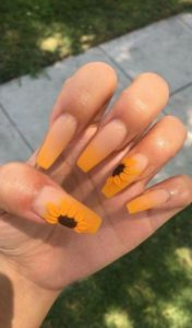 yellow sunflower ombre
