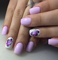 lilac butterfly white