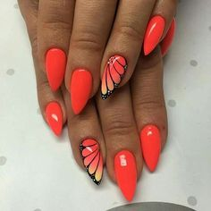 orange wing flutter