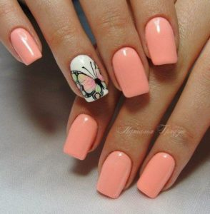 coral white butterfly