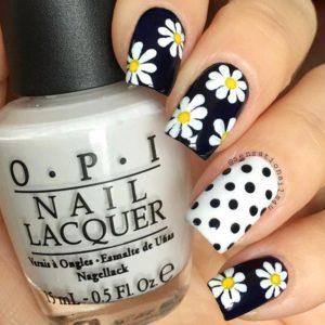 dots and daisies