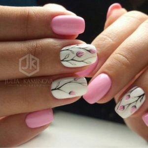 pink tulip spring