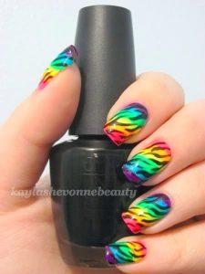 colorful zebra stripes