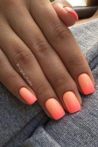 2020 orange