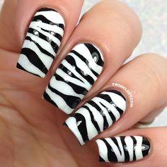 animal zebra pattern